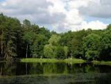 Забудовнику заборонили будувати ТОЦ на території національного парку