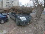 Як уберегти автомобіль у вітряну погоду ТОП-5 правил